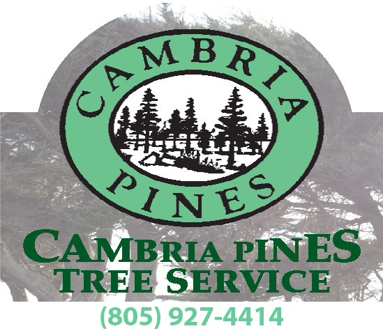 Cambria Pines Tree Service logo